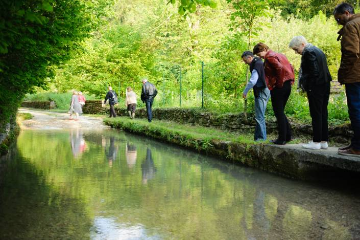 Seminar in Alsace visit walking