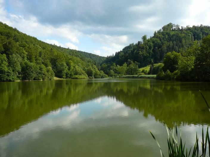 Seminar in Alsace fishing